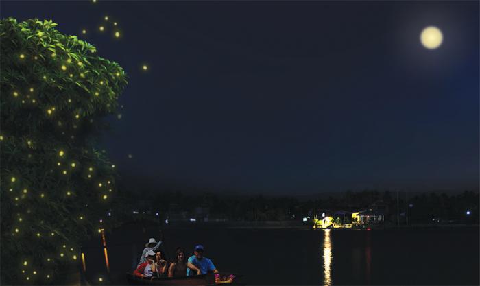 ภาพนั่งเรือชมหิ่งห้อย ที่มา :http://www.natsima.com/this-is-thailand/floating-market/