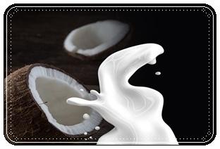 ภาพนมมะพร้าว ภาพโดย LisaRedfern ที่มา : https://pixabay.com/en/coconut-milk-milk-coconut-non-dairy-1623611/