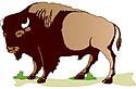 วัวกระทิงไม่ชอบสีแดงจริงหรือ